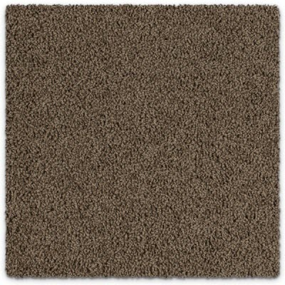 Giles-Carpets-Auckland-Feltex -Carpet-bailey_ii-olive_brown-