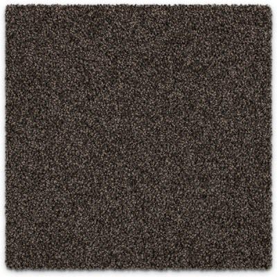 Giles-Carpets-Auckland-Feltex -Carpet-coastal_stipple-ocean_spray-