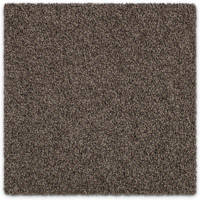 Giles-Carpets-Auckland-Feltex -Carpet-coastal_stipple-salty_air-