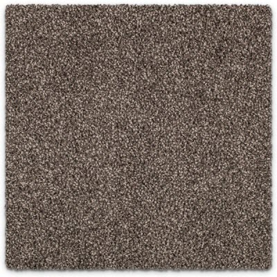 Giles-Carpets-Auckland-Feltex -Carpet-coastal_stipple-summer_nights-