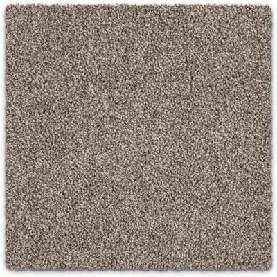 Giles-Carpets-Auckland-Feltex -Carpet-coastal_stipple-sunny_dayz-