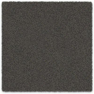 Giles-Carpets-Auckland-Feltex -Carpet-okiwi_bay-monro-