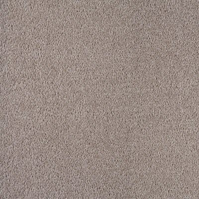 Giles-Carpets-Auckland-Feltex -Commercial-Whitby-Papyrus
