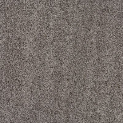 Giles-Carpets-Auckland-Feltex -Commercial-Whitby-PumisStone