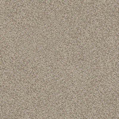Giles-Carpets-Auckland-Specials-Feltex-Okiwi_Bay-Nixon