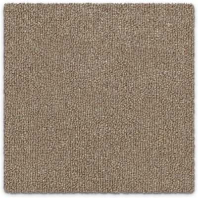 Giles-Carpets-Auckland-Feltex-Carpet-Kings_Domain-Sandy_Shores