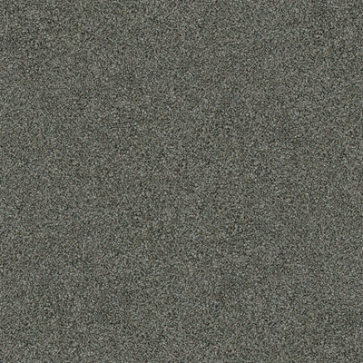 Giles-Carpets-Auckland-Belgotex-Hilton-Silver_Crown