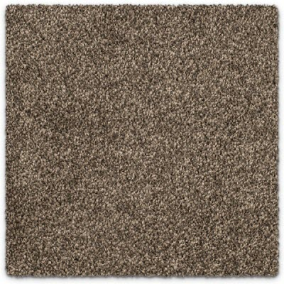 Giles-Carpets-Auckland-Feltex -Carpet-Awana_Bay-Pebble