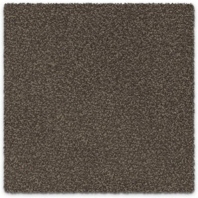 Giles-Carpets-Auckland-Feltex -Carpet-cable_bay-haven-