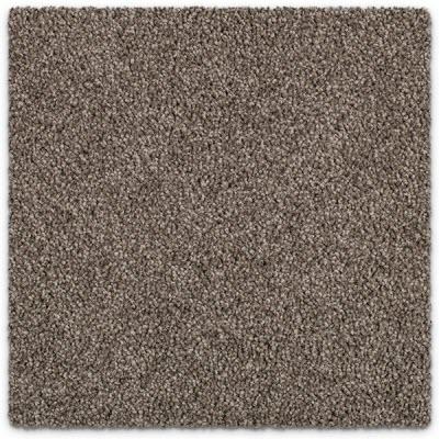 Giles-Carpets-Auckland-Feltex -Carpet-coastal_stipple-sandy_dunes-