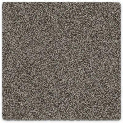 Giles-Carpets-Auckland-Feltex -Carpet-okiwi_bay-dakota-