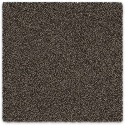 Giles-Carpets-Auckland-Feltex -Carpet-okiwi_bay-stansell-