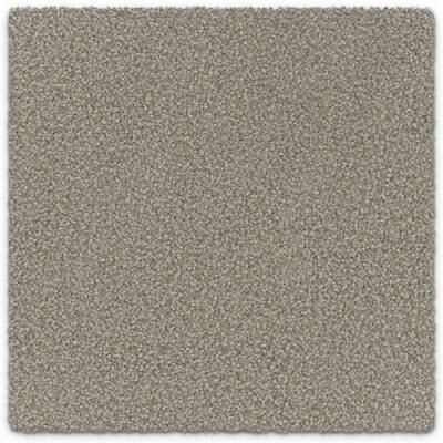 Giles-Carpets-Auckland-Feltex -Carpet-ruby_bay-admire-