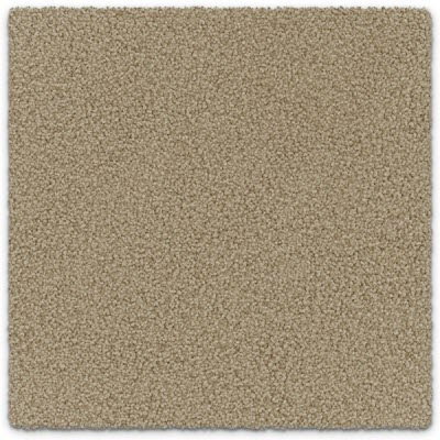 Giles-Carpets-Auckland-Feltex -Carpet-ruby_bay-amber-