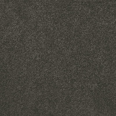 Giles-Carpets-Auckland-Irvine_international-Carpet-Empire-Titanium