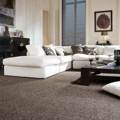 Giles-Carpets-Auckland-Carpet1