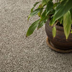 Giles-Carpets-Auckland-Robert_Malcolm-