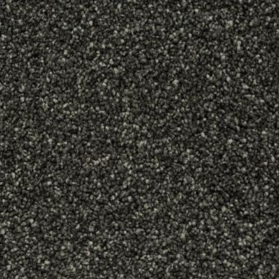 Giles-Carpets-Auckland-Robert_Malcolm-Fendalton-Glandovey_Road