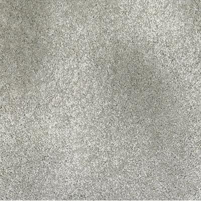 Giles-Carpets-Auckland-Studio-Excelsior-Platinum