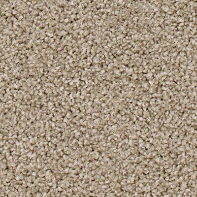 Giles-Carpets-Auckland-Feltex -Carpet-Bonita-Borneo.