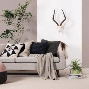 Giles-Carpets-Auckland-Feltex6 - Copy