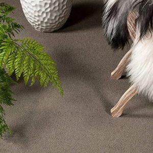 Giles-Carpets-Auckland-Feltex9