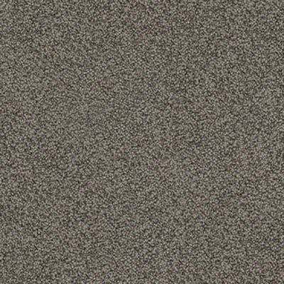 Giles-Carpets-Auckland-Feltex -Carpet-okiwi_bay-dakota-