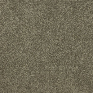 Giles-Carpets-Auckland-Irvine_international-Carpet-Empire-Spice