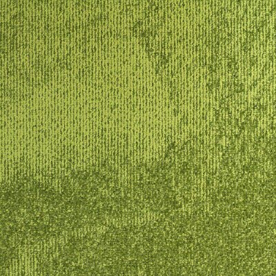Giles-Carpets-Auckland-Carpet-Tile-Stoneage-Belgotex-Lime_Green-240