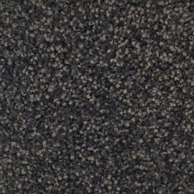 Giles-Carpets-Auckland-Belgotex-Bravo-Echo_