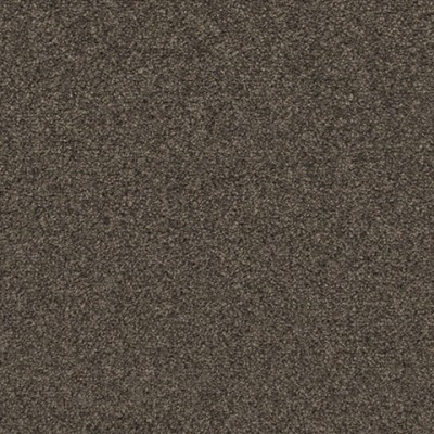 Giles-Carpets-Auckland-Belgotex-Donegal-Beaver_