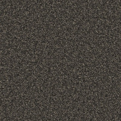 Giles-Carpets-Auckland-Belgotex-Donegal-Truffle_989_