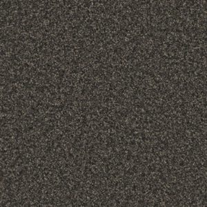 Giles-Carpets-Auckland-Belgotex-Galway-Truffle_989_