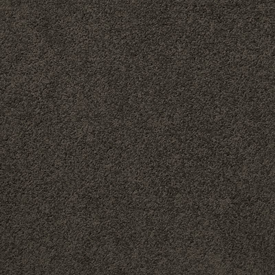 Giles-Carpets-Auckland-Belgotex-Liberty-Bark