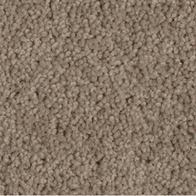 Giles-Carpets-Auckland-Godfrey_Hirst-Enchant_48-Greywacke