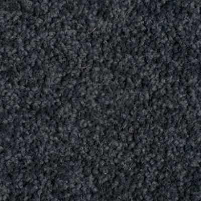 Giles-Carpets-Auckland-Godfrey_Hirst-Enchant_48-Midnight_Blue