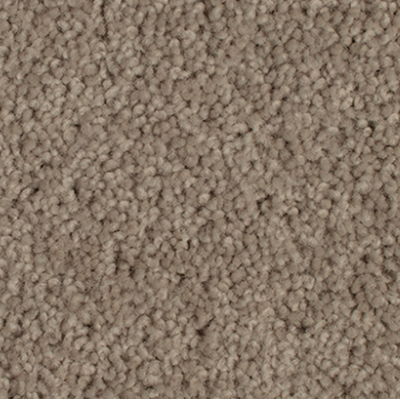 Giles-Carpets-Auckland-Godfrey_Hirst-Grand_Luxury-Greywacke
