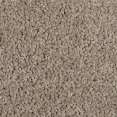 Giles-Carpets-Auckland-Godfrey_Hirst-Grand_Luxury-Stonehenge